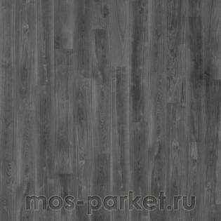 Avatara Perform Straight Edition N10 2704 Дуб Антарес черно-серый