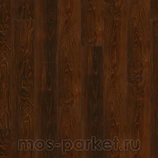 Falquon Blue Line Wood D2920 Plateau Maple