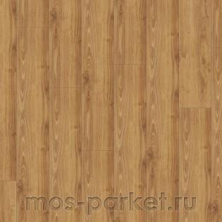 Falquon Blue Line Wood D4189 Victorian Oak