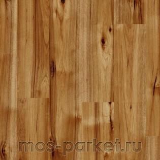 Kaindl Easy Touch Premium Plank High Gloss P80070 Гикори Браво