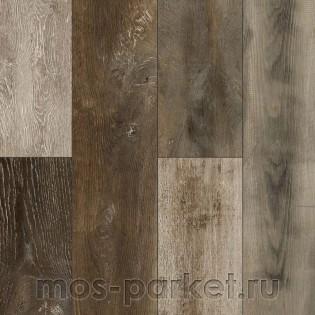 Parador Trendtime 1 1601433 Смешанный лес дикий