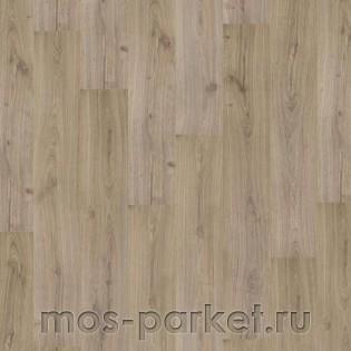 Tarkett Odyssey Oak Knoss