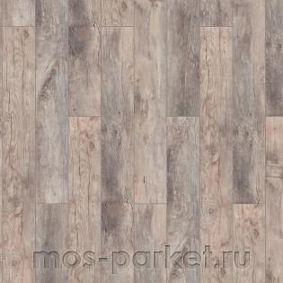 Timber Forester Дуб Ористано