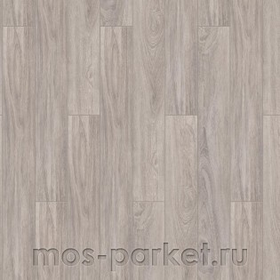 Timber Forester Дуб Ротондо