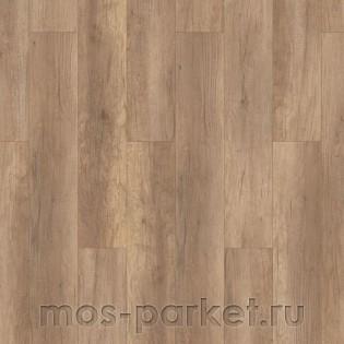 Timber Harvest Дуб Маверик