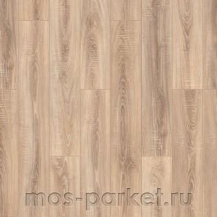 Timber Harvest Дуб Прованс