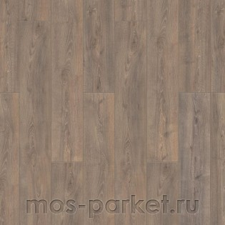 Timber Harvest Дуб Юкатан