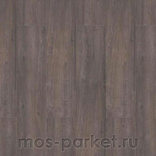 Wiparquet Authentic 8 Realistic 30119 Дуб Графит