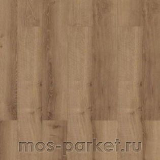 Wiparquet Authentic 8 Narrow 31875 Дуб Натуральный