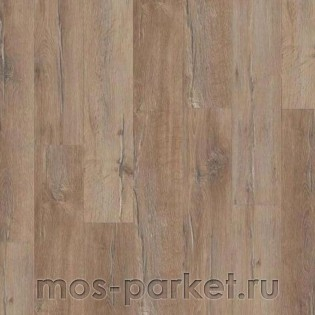 Wiparquet Authentic 10 Narrow 33849 Дуб Капучино