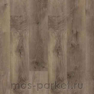 Wiparquet Authentic 8 Realistic 47426 Дуб Вале