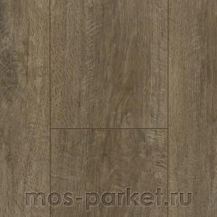 Xpert-pro Barista BAR00432 Дуб Ява