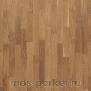 Focus Floor Classic Дуб Calima 3S