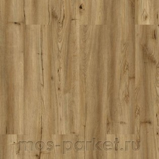 Wicanders Wood Go LJY6001 Oak Rustic