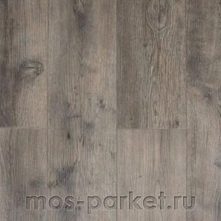 IVC Linea 24856 Star Oak