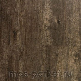 IVC Primero Dry Back 24982N Major Oak