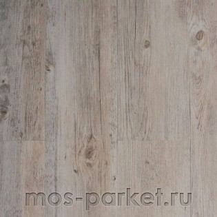 IVC Ultimo Dry Back 24243Q Colombia Pine