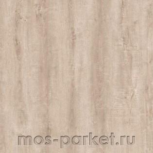 LG Prestg Click 7953
