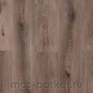 Vox Viterra 6004053 Asian Oak