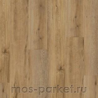 Wineo 400 Wood XL DLC00128 Liberation Oak Timeless