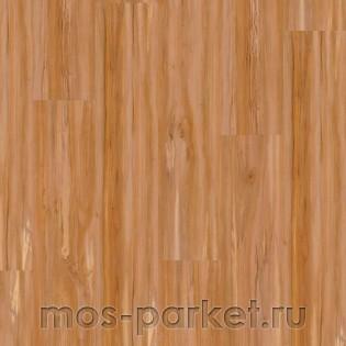 Wineo 400 Wood DB00107 Soul Apple Mellow