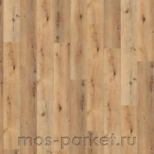 Wineo 800 Wood XL DB00064 Corn Rustic Oak