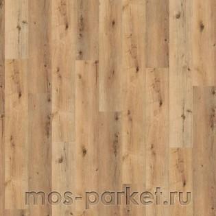 Wineo 800 Wood XL DB00064 Corn Rustic Oak