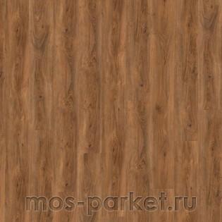 Wineo 800 Wood XL DB00066 Cyprus Dark Oak