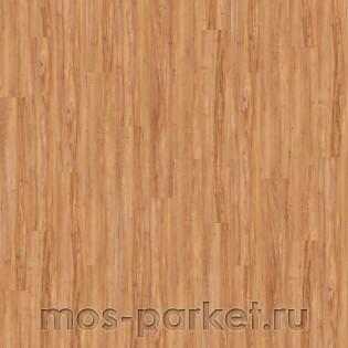 Wineo 800 Wood DB00081 Honey Warm Maple