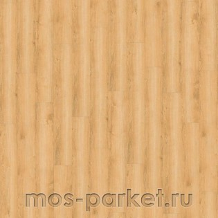 Wineo 800 Wood DB00080 Wheat Golden Oak