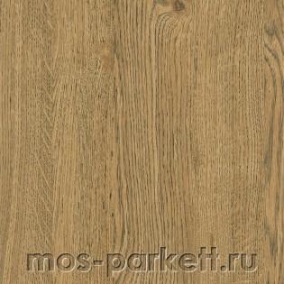 Kastamonu Floorpan Black FP46 Дуб пробковый